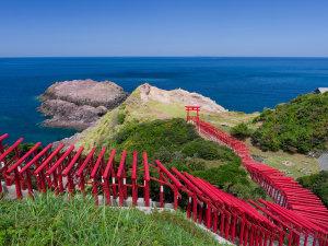 外湯文化を楽しむ宿 俵山温泉 泉屋旅館:元乃隅稲荷神社:参拝していただきたい神社。海と123基の赤い鳥居が印象的です。当館より車で42分。
