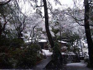 出雲のホテル 武志山荘:雪が積もった時の日本庭園