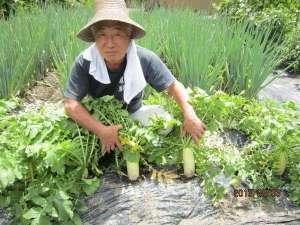 奥飛騨百姓座敷の宿 藤屋:百姓ならおてのもの!まかせんしゃい♪~自家野菜の収穫風景~