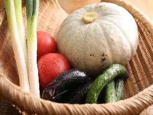 料理に使用する野菜は契約農家から採れたてが届きます。(一例).