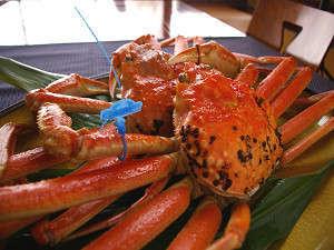 木津館:11月6日からズワイガニ漁が解禁になります。美味しいカニをお召し上がりください。