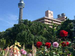 スターホテル横浜の写真