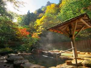 信州角間温泉 岩屋館:その年毎に色を変える紅葉に囲まれ、自然に浸れる露天風呂