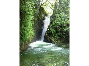 炭酸泉の宿 泉岳舘