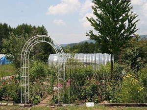 ペンション ハローウッド:2012年進化する自家ハーブ園