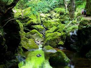 赤目温泉隠れの湯対泉閣
