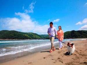 【気比の浜海岸】徒歩10分♪ワンちゃんとのお散歩にも♪※最新の観光情報は公式HPをご確認ください。