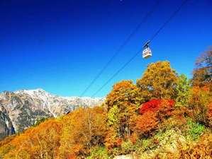 奥飛騨温泉郷 花ごころ万喜(ばんき):≪新穂高ロープウェイの紅葉≫ 見ごろは10月上旬から10月下旬