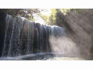 シャンブル・ドット アルムの森:小国町の鍋ヶ滝ペンションから車で大観峰方面~小国経由で約30分です。