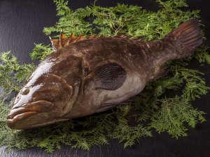 かつうら御苑 那智の滝を遠望できる海辺の絶景露天と美食の宿:紀州の高級魚クエ