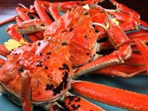【タグ付ブランド蟹!】越前蟹フルコース!「食べ切れない!満腹!」温泉施設チケット付(夕食はお部屋)