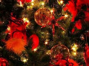 ホテルnanvan浜名湖:素敵なクリスマスの夜を