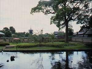 東寺洛南会館:四季おりおりの景色をごらんいただける庭・・・食堂からの眺め