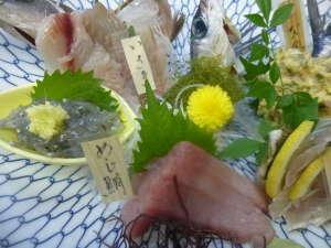 真鶴の地魚にこだわる料理宿 しょうとく丸