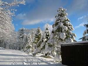 丘の上のホテル:雪のアプローチ