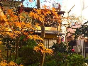 ゲストハウス KETE:秋のお庭