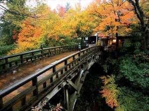 【鶴仙渓】とりわけ秋のこおろぎ橋の美しさは格別。赤や黄色の紅葉に染まります