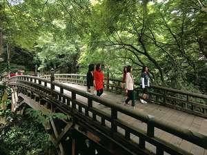 こおろぎ橋四季を通して湯客を魅了する名勝地です。ホテルより徒歩20分