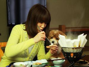 わんこと泊まる宿 上州苑:◆【ご夕食】わんことご家族だけの楽しい夕食のお時間をお過ごしください。