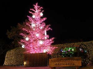 有馬温泉 有馬グランドホテル:中庭では幻想的なクリスマスイルミネーションをお楽しみいただけます。(12月25日まで)