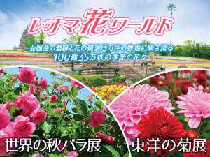 大江戸温泉物語 ホテルレオマの森:東洋の菊展