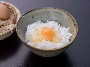 【お食事】小ぶりですが味は濃厚 お醤油も美味!な土佐ジロー卵掛け御飯