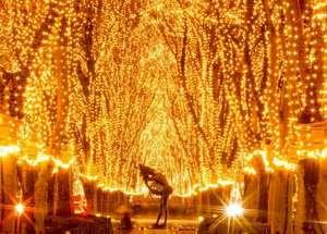 ホテル パーク仙台1:☆仙台の12月の風物詩・光のページェント☆