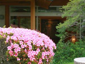 有馬温泉 兵衛向陽閣:【初夏の風景】5~6月ごろには美しいつつじが咲き誇り、庭園を彩ります。