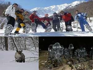 旅人宿 松葉屋:大人気!!スノーシューツアーで雪山を歩こう♪
