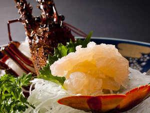 名物磯舟料理 おくのせこ:伊勢海老のお造り