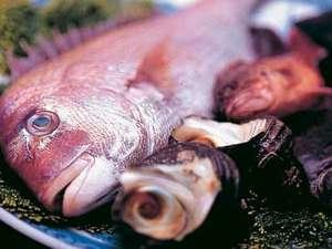 民宿うずしお:天然鯛の証!ブルーのアイシャドウが綺麗