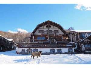ホープロッヂ乗馬牧場 手作りログハウスの宿の写真
