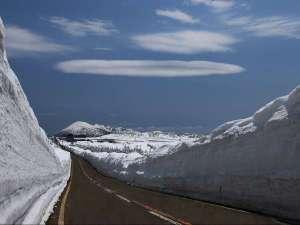 八幡平ロイヤルホテル:【雪の回廊】雪の壁の中をドライブ♪