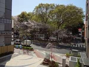 HOTEL松本屋1725:ホテルから見た大國魂神社の風景