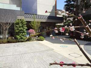 HOTEL松本屋1725:駐車スペースはホテル正面にございます。