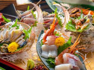 【お造り】伊豆の地魚を中心としております。(一例)