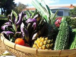はなりびら:旬のお野菜