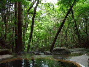 辰巳屋山荘里の湯