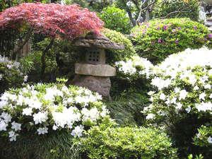 若浦屋旅館:*季節の移ろいをお楽しみ下さい。