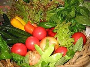 清里ペンション いずみ:自家農園で太陽の日差しを沢山浴びて育てた採り立ての高原野菜です