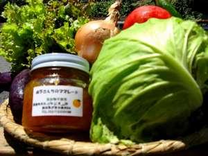 温泉民宿 赤沢荘:お料理は裏の畑で取れた新鮮野菜を使っております!