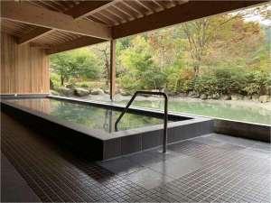 群馬 藤岡 森の温泉ホテル(旧:藤岡温泉ホテルリゾート)の写真