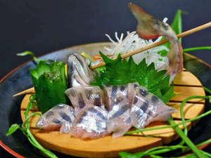 湯屋温泉 炭酸泉の温泉旅館 ニコニコ荘:岩魚の姿造り