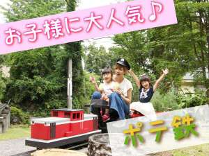 乗車可能の庭園鉄道