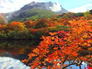ホテルエピナール那須:ひょうたん池◆姥ヶ平から望む色鮮やかな紅葉