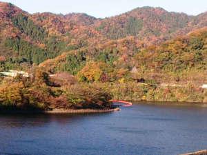 ラフォーレ倶楽部 伊東温泉 湯の庭:松川湖の紅葉