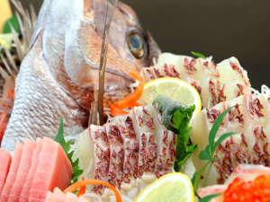 民宿 魚赤