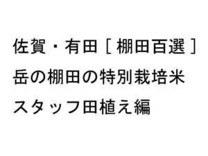佐賀・有田[棚田百選]岳の棚田の特別栽培 スタッフ田植え編