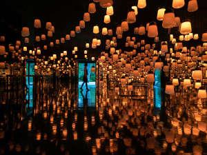 太古の森の中に立つホテル内に、『チームラボ』が手がけたアートの森(呼応するランプの森)が出現。