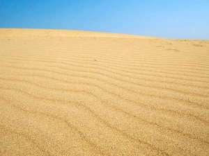 【鳥取砂丘】雄大さと起伏の大きさで、どの砂丘よりも美しいといわれています(当館より約車40分)